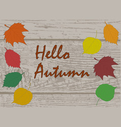 hello autumn calligraphy text on wooden plank vector image