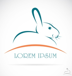 Rabbit vector image