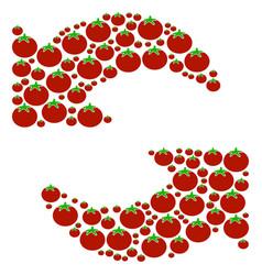 Refresh composition of tomato vector