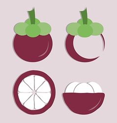 set of mangosteen icon vector image vector image