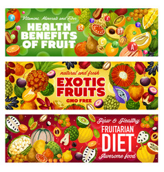 Tropical fruits exotic berries of fruitarian diet vector