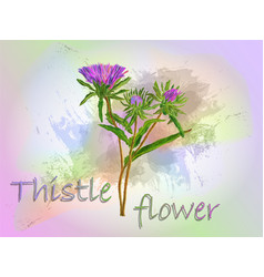 thistle watercolor food vector image