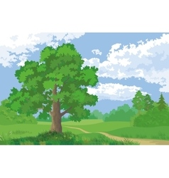 Landscape Summer Forest and Oak Tree vector image