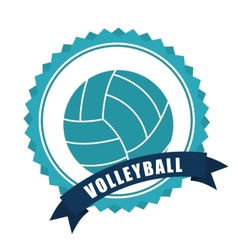 volleyball ball vector image vector image