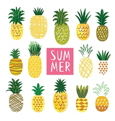 Ananas collection vector