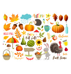 autumn set with hand drawn elements calligraphy vector image