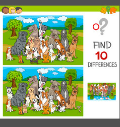 find differences game with purebred dogs vector image