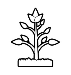 plant in soil icon image vector image