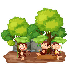 scene with three monkeys in park vector image