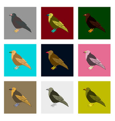 set of in flat style raven vector image