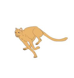 Yellow cheetah running vector