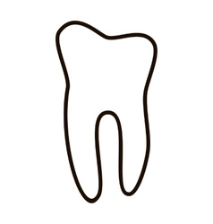 Human teeth icons set isolated on white background vector image