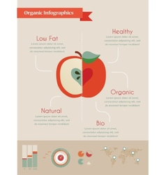 organic infographics with apple and charts vector image