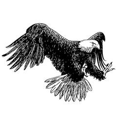Eagle 10 vector image vector image