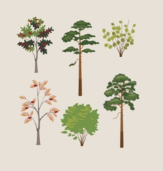 forest trees and bushes vector image vector image