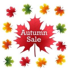 Autumn Sale on maple leaf vector