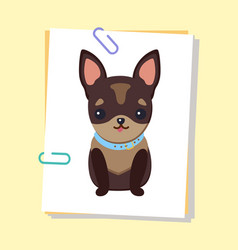 Chihuahua puppy with collar vector