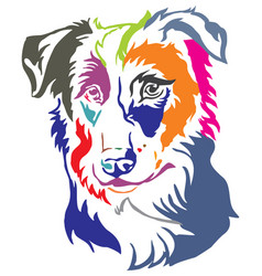 Colorful decorative portrait of dog border collie vector