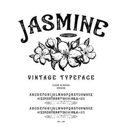 font jasmine vintage typeface design vector image
