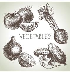 Hand drawn sketch vegetable set Eco foods vector image