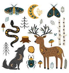 Set isolated magic forest fauna and flora vector