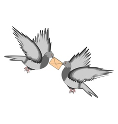 Two pigeons with a letter on a white background vector