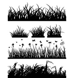 grass silhouette set vector image vector image