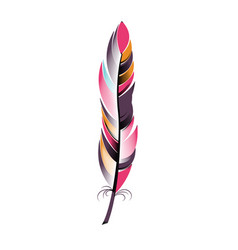colored narrow feather boho style vector image vector image