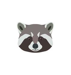 wild raccoon head animal mascot vector image vector image