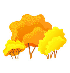 autumn trees lush yellow crown image isolated on vector image