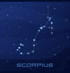 constellation scorpius astrological sign vector image