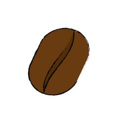Delicious coffee bean vector