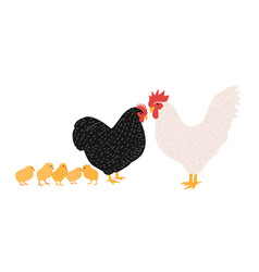 family of cock and chicken collection of rooster vector image