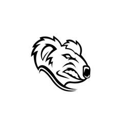 koala cute bear vector image