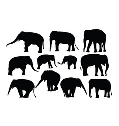 elephant activity silhouettes vector image