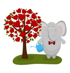 Elephant waters a love tree vector