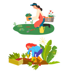 Farming and gardening hobby flowers and beetroot vector