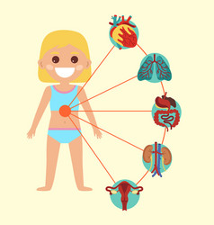 Female health poster with child body anatomy vector