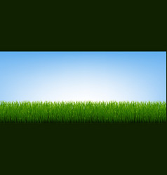 Green grass border and blue sky background vector