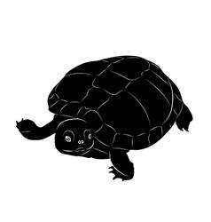 turtle silhouette vector image