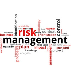 Word cloud risk management vector