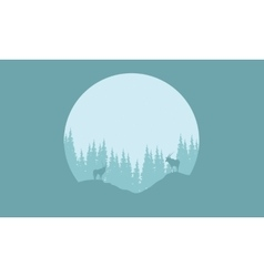 Silhouette of animal and spruce vector image vector image
