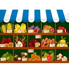 Exotic fruits showcase booth fruit shop stand vector