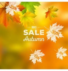 Autumn sales background vector image