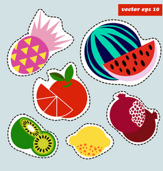 colored fruit sticker set vector image