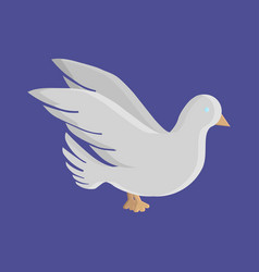 dove flat icon vector image