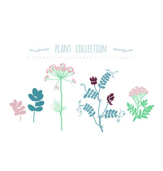 Green plants set botanic collection vector