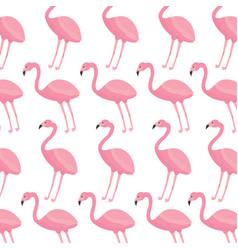 pink flamingo exotic bird decorative seamless vector image