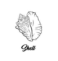 Sea shell black ink vector