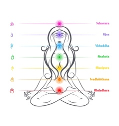 Seven chakras on body woman silhouette vector